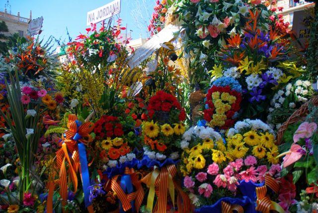 Muchos ramos de flores de muchos colores