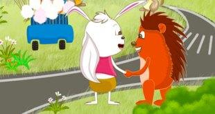 truyện vì sao thỏ cụt đuôi