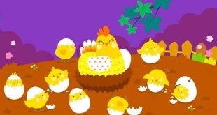 bài thơ 10 quả trứng tròn