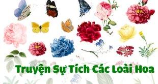 truyện sự tích các loài hoa