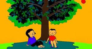 Bài Thơ Cây Bàng Mầm Non - Lời Bài Thơ Chi Tiết Kèm Giáo Án