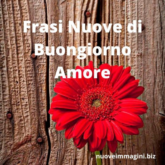 Buon natale, amore mio, baciamoci e coccoliamoci tutto il giorno. 48 Immagini E Frasi Nuove Di Buongiorno Amore Nuove Immagini