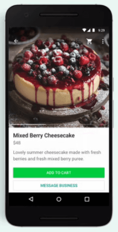 How to buy a product - service using the WhatsApp shopping button - Selecting the MESSAGE BUSINESS button