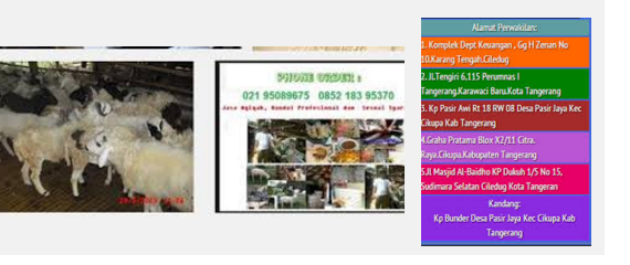 paket aqiqah murah karawaci