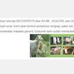 harga kambing aqiqah 2016 tangerang
