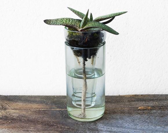Wasserspender aus Limoflasche