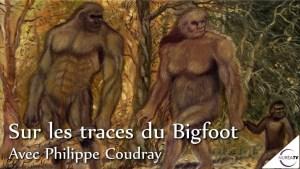 sur les traces du Bigfoot