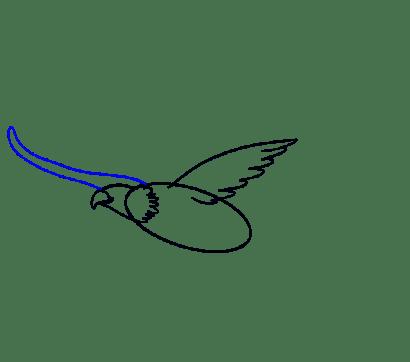 Cara Menggambar Garuda: Langkah 8