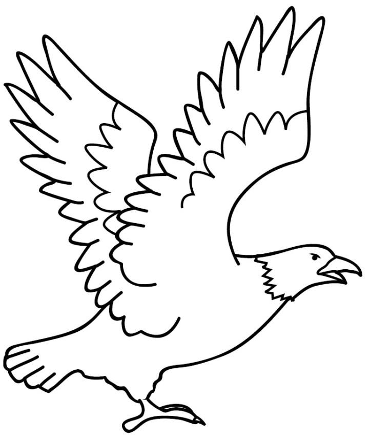Mewarnai Gambar Sketsa Garuda
