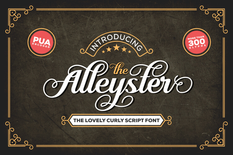 Alleyster - Lovely Curly Script Font