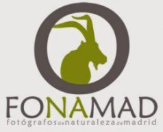 http://www.fonamad.org/