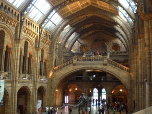 Natural science history museum