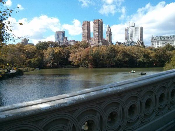 Que ver y que hacer en Central Park