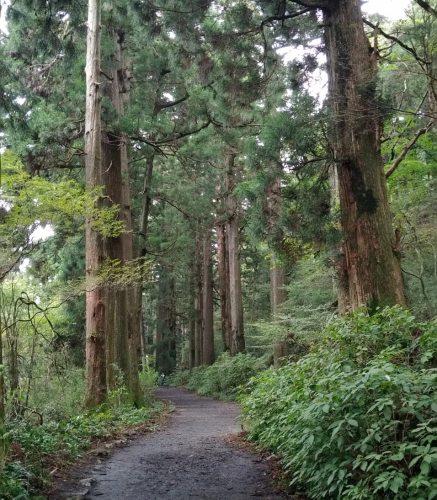 Que ver en Hakone