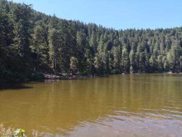 Lago Mummelsee