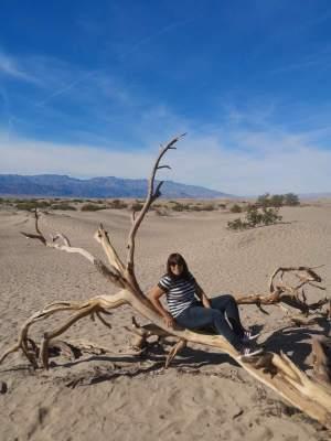 Mesquite Sand Flat Dunes