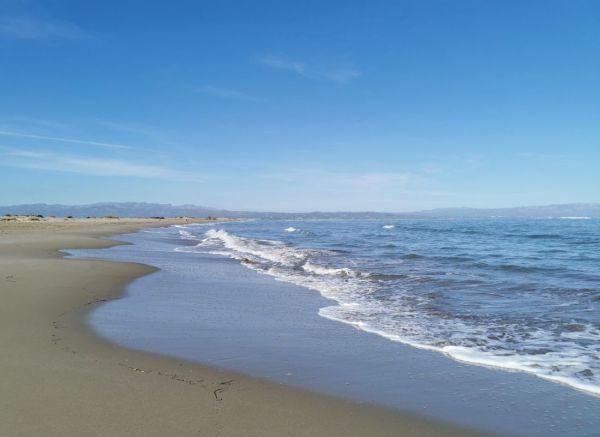 Playa de Fangar