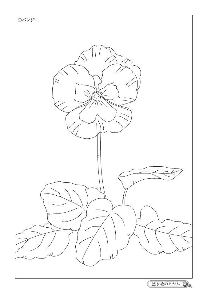 5月の花ぬりえ - 塗り絵のじかん