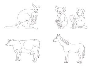 カンガルーとコアラとウシとウマの塗り絵