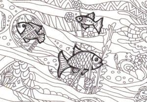 太枠のある魚の塗り絵