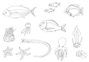 魚やタコなど海の生き物の塗り絵