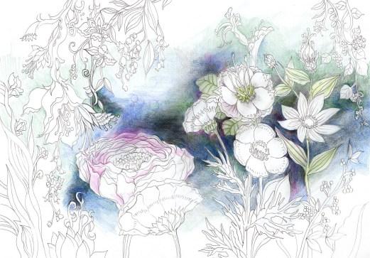 夜に咲く花の細密な塗り絵