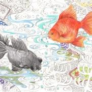 2匹の金魚と和模様の背景の塗り絵