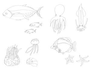 海の生物のなぞり絵