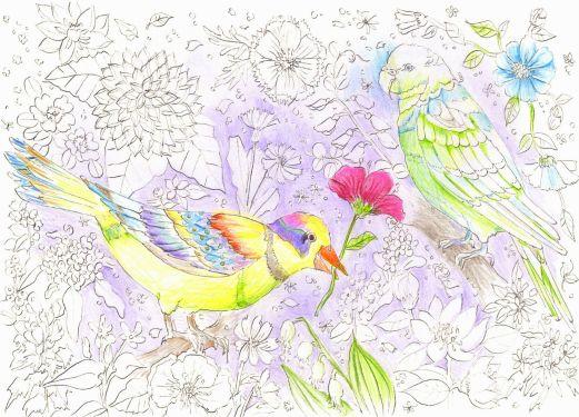 花園にいる二羽の鳥の塗り絵