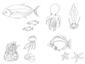海の生き物のなぞり絵のお手本