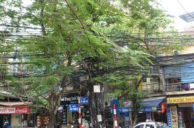 Hue Hanoi Da Lang - 18