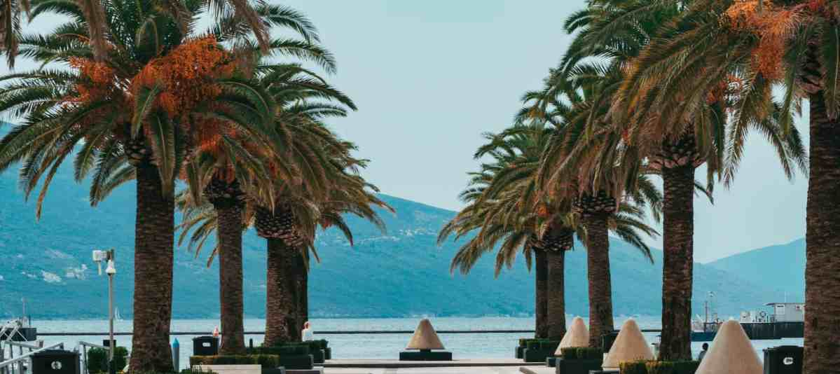 Tivat Bay, Montenegro, Seaside