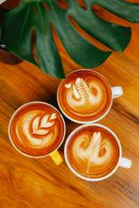 cups of latte on table with plant