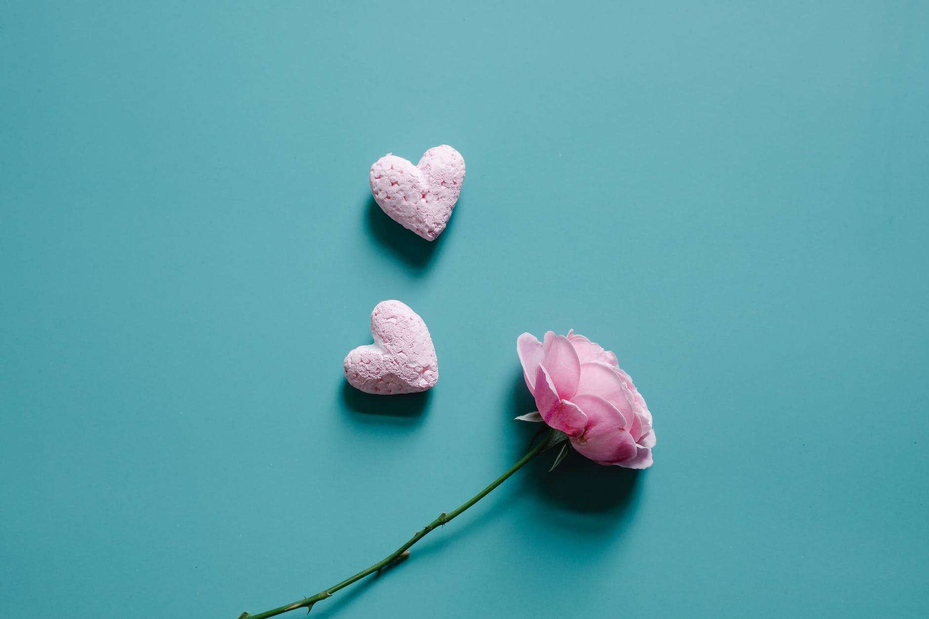 heart shaped decorations and flower on vivid surface