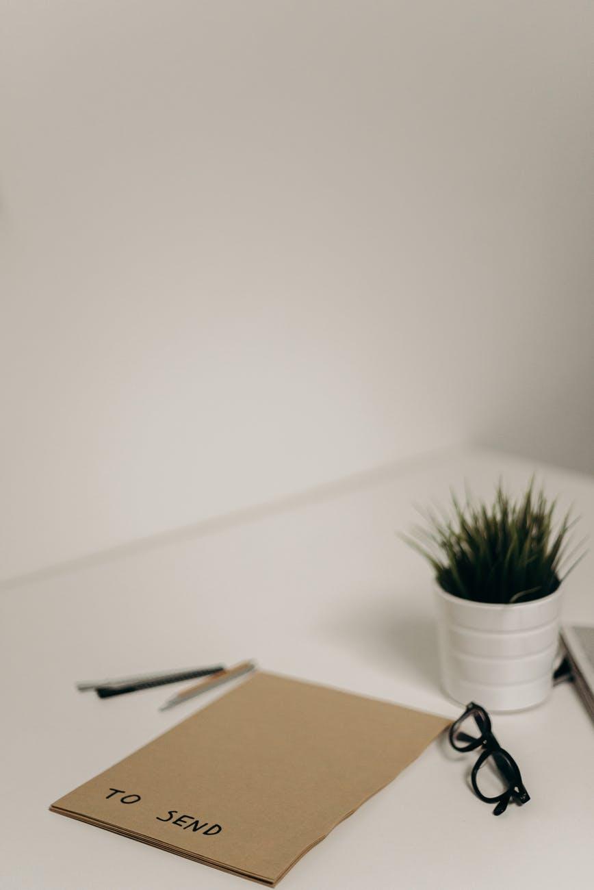 green plant in white ceramic pot on white table