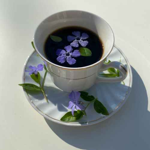 cup of coffee decorated with flowers with leaves on saucer