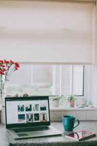 red flowers in vase beside laptop