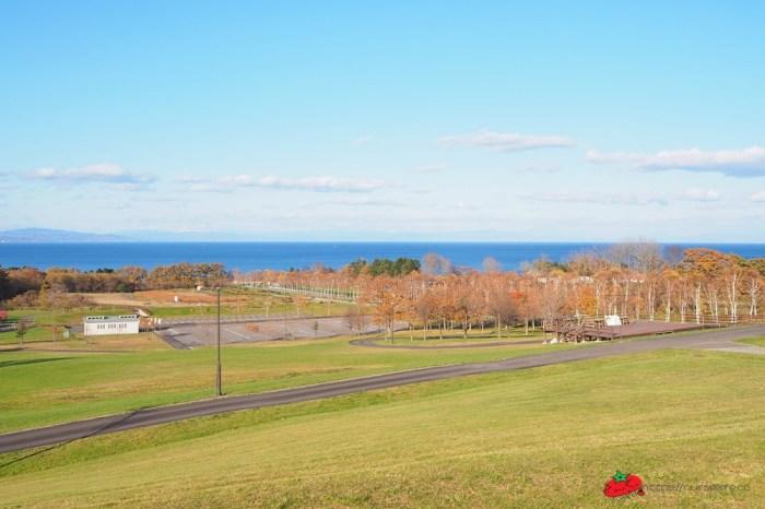 北海道 八雲PA休息站,超大遊戲區,海天一線風景休息好自在