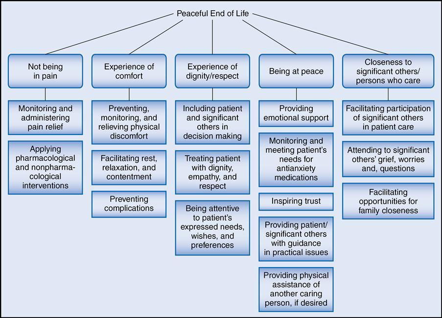 nursing explanation concepts