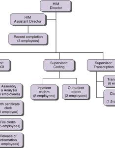 Figure health information management department organization chart roi release of also him nurse key rh nursekey