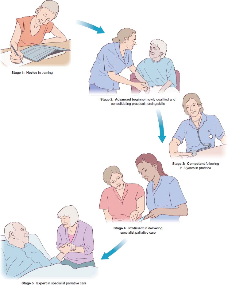 Pictorial representation shows five stages of progression for role of palliative care clinical nurse specialist: ÒNovice in trainingÓ to Òadvanced beginnerÓ to ÒcompetentÓ (2-3 years experience) to ÒProficientÓ to ÒExpertÓ.