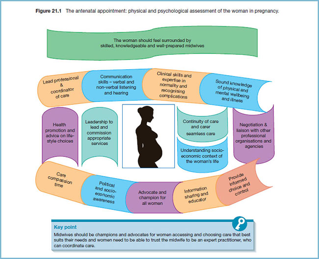 Diagram shows woman in pregnancy and her physical and psychological assessment of woman in pregnancy with markings for lead professional and coordinator of care, communication skills - verbal and non-verbal listening and hearing, care compassion time, et cetera.