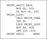Computer Systems Basics—Software