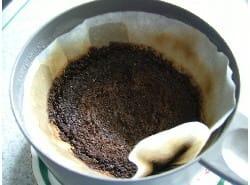 コーヒー残渣様