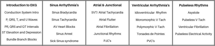 Basic EKG Interpretation Arrhythmia class