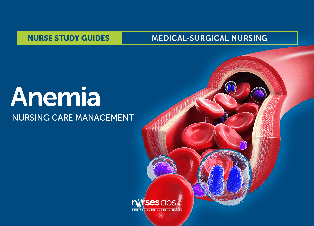 Anemia Nursing Care Management A Study Guide