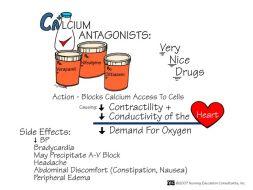 Calcium Antagonists