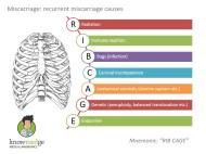 Medical-Mnemonics-Miscarriage-ribcage
