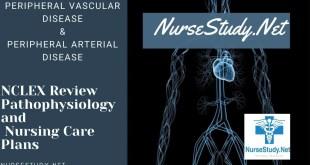 Peripheral Vascular Disease & Peripheral Arterial Disease