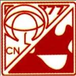 Critical Care Nurses Association of the Philippines